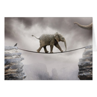 Baby elephant walks tightrope across big gorge. card