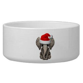 Baby Elephant Wearing a Santa Hat