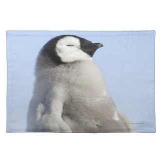 Baby Emperor Penguin, Snow Hill Island Placemat