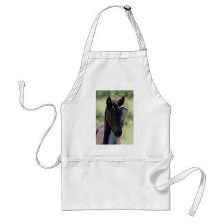 Baby foal apron