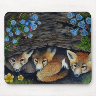 Baby foxes and flowers mousepad