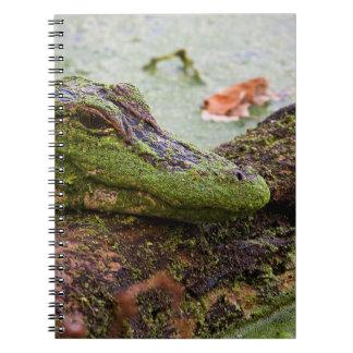 """Baby Gator"" Notebooks"