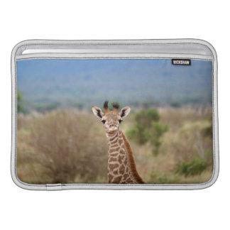 "Baby giraffe picture, Kenya, Africa   11"" Sleeve For MacBook Air"
