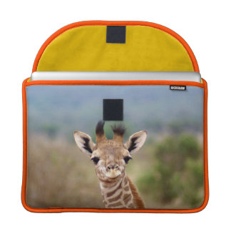 "Baby giraffe picture, Kenya, Africa | 13"" MacBook Pro Sleeve"