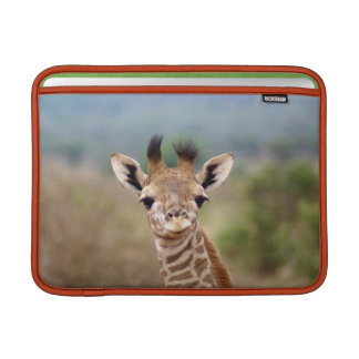"Baby giraffe picture, Kenya, Africa | 13"" MacBook Sleeves"