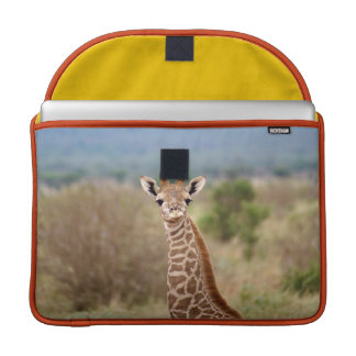 "Baby giraffe picture, Kenya, Africa | 15"" Sleeve For MacBooks"