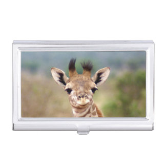 Baby giraffe picture, Kenya, Africa | Business Card Cases