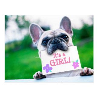 Baby Girl Announcement With Dog Custom Postcard