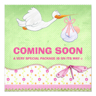 Baby Girl Bird Delivery Pregnancy Announcement