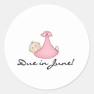 Baby Girl Due in June Round Sticker