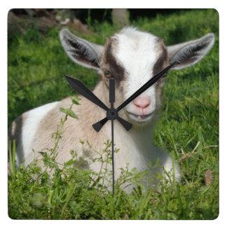 Baby Goat Barnyard Farm Animal Grey Gray Chevron Clocks
