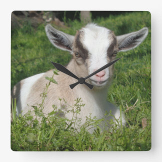 Baby Goat Barnyard Farm Animal Grey Gray Chevron Square Wall Clock