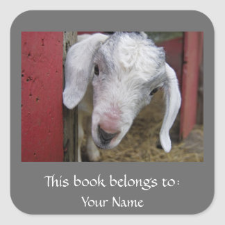 Baby Goat Bookplate Square Sticker