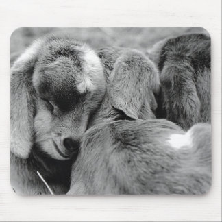 Baby Goats Mouse Pad