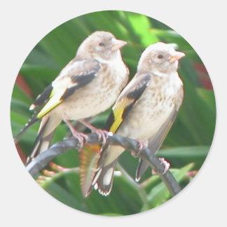 baby goldfinchs classic round sticker