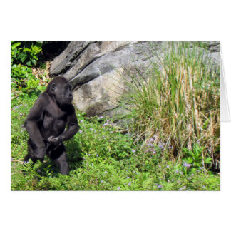 Baby Gorilla Birthday Card