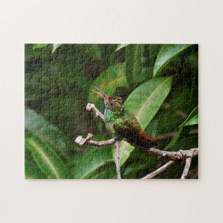 Baby Green-Emerald Hummingbird Puzzle