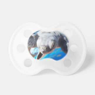 Baby Green Turtle Pacifier