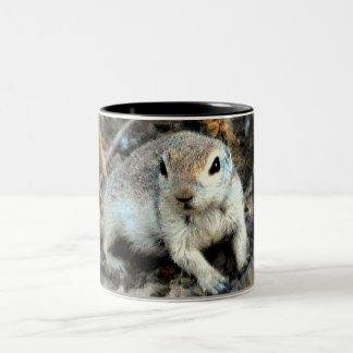 Baby Ground Squirrel Coffee Mug