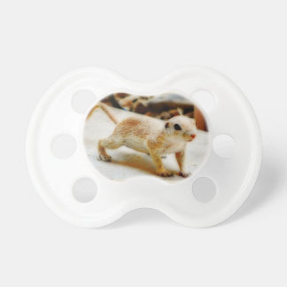 Baby Ground Squirrel in Orion Pacifier