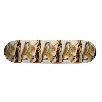 Baby Ground Squirrel Skateboard
