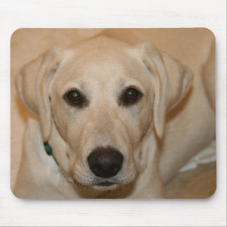 Baby Gus Mouse Pad