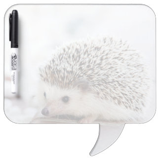 Baby Hedgehog Dry Erase Board