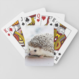 Baby Hedgehog Playing Cards