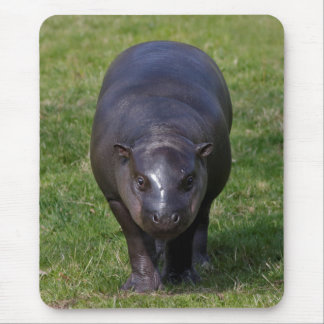 Baby Hippo Mousemat Mouse Pad