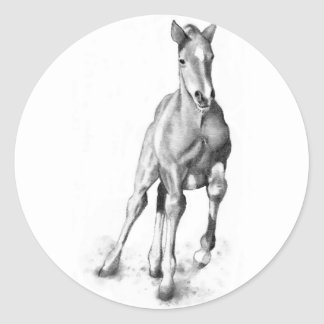 Baby Horse, Colt Running: Pencil Art Classic Round Sticker