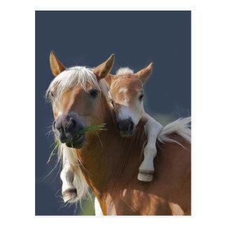 Baby Hugs Postcard
