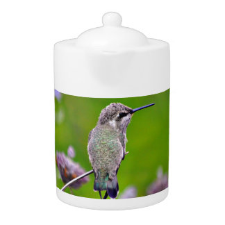Baby Hummer in Purple Medium Teapot