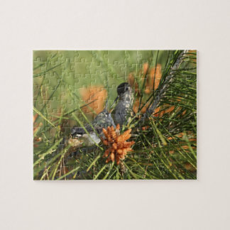 Baby Hummingbird Being Fed by Mother Jigsaw Puzzle