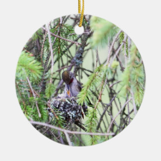 Baby Hummingbirds in a Nest Round Ceramic Ornament