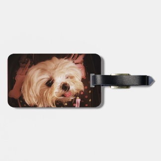 Baby in a Bag Maltese Puppy Bag Tag