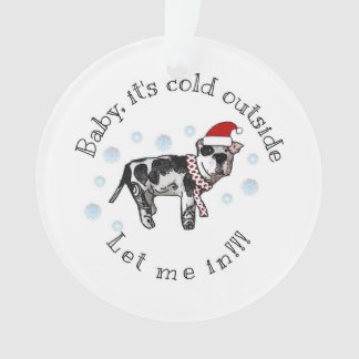 Baby it's cold outside, LET ME IN! Ornament