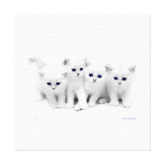 Baby Kittens Canvas Print