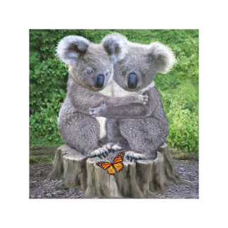 BABY KOALA HUGGIES CANVAS PRINT