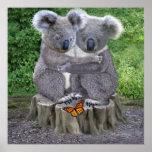 BABY KOALA HUGGIES POSTER