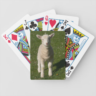 Baby Lamb Sheep Playing Cards