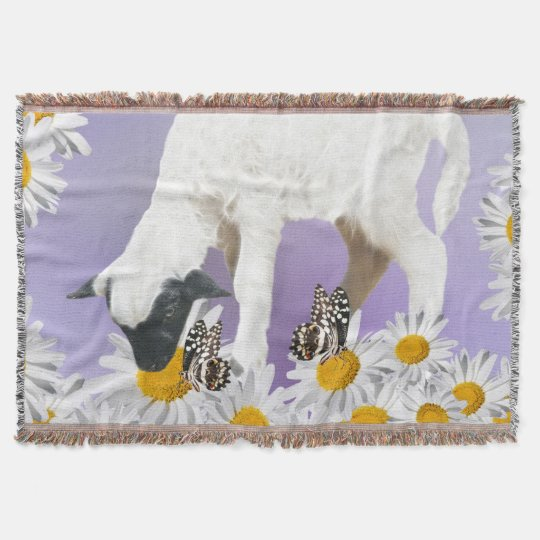 Baby Lambs first steps Throw Blanket