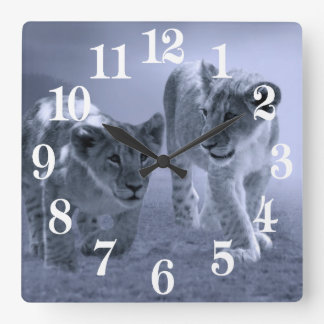Baby lion cubs at play square wall clock