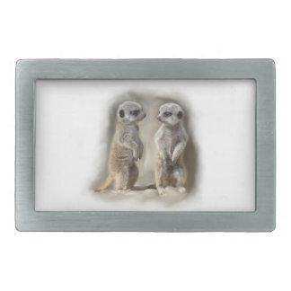 baby meerkats rectangular belt buckles