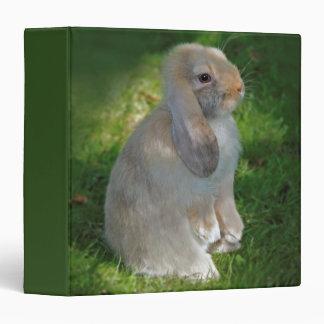 Baby Minilop Rabbit Binder