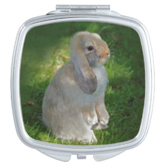 Baby Minilop Rabbit Compact Mirror