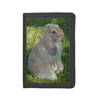 Baby Minilop Rabbit Wallet
