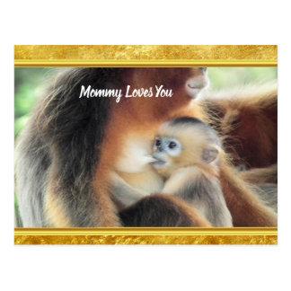 Baby Monkey sucking it's mothers milk. Postcard