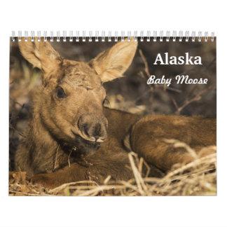 Baby Moose Calendars