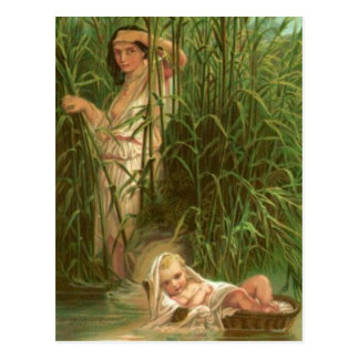 Baby Moses And The River Nile Postcard