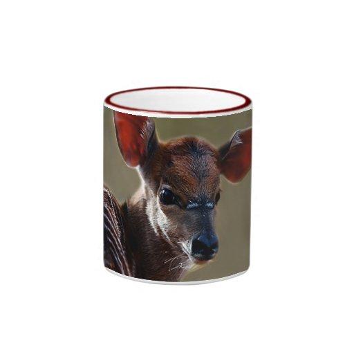 Baby Nyala Deer looking Mugs